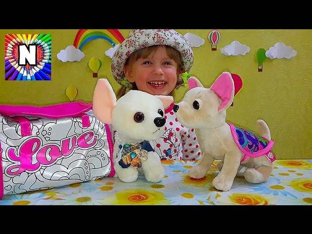 Sobachka-Chi-chi-love-Raspakovka-igrushki-Video-obzor_Doggie-Chi-chi-love-Video-Review